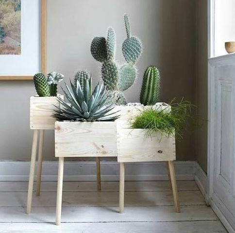cactus-caisse-bois-diy-min.jpg