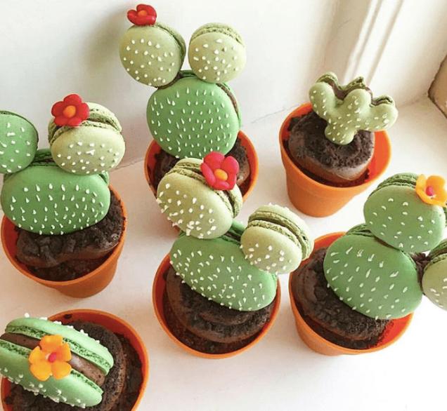 Macarons Cactus