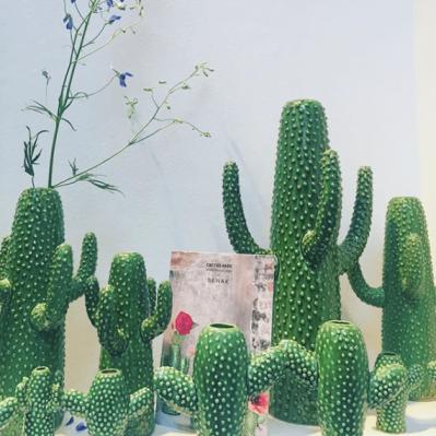 Serax_Cactus-min