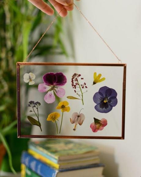 herbier-fleurs-sechees3-min