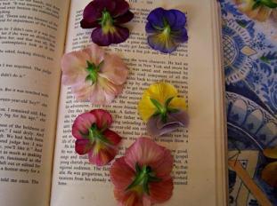 sechoir-fleurs1-min