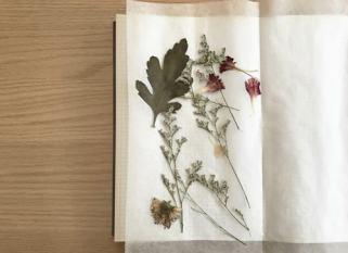 sechoir-fleurs3-min