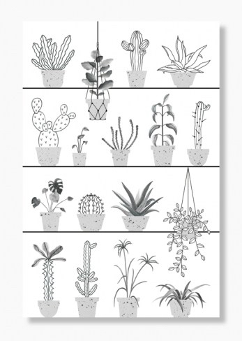 uncactusenville_poster-botanic