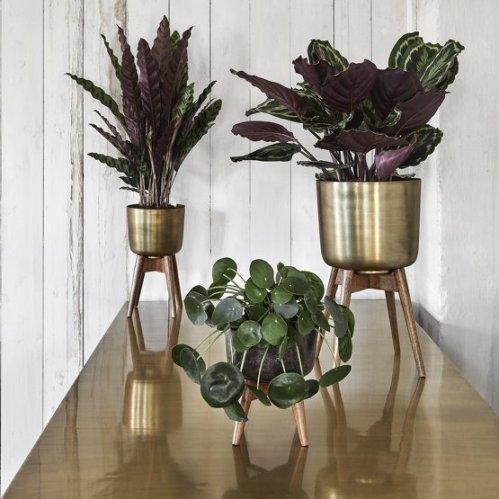 pot-de-fleur-sur-pied-m-planter-nordal-thecoolrepublic 2