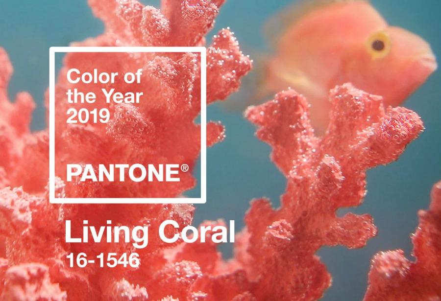 Couleur pantone 2019 corail living coral Happy POG